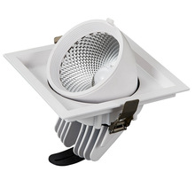 360 degree rotation Adjustable Pit mounted COB LED Downlight Warm white Cold White 30W 40W COB LED Down Light Indoor light(China)