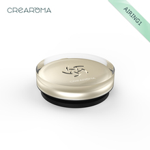 Champagne Golden color car aroma diffuser oem(China)