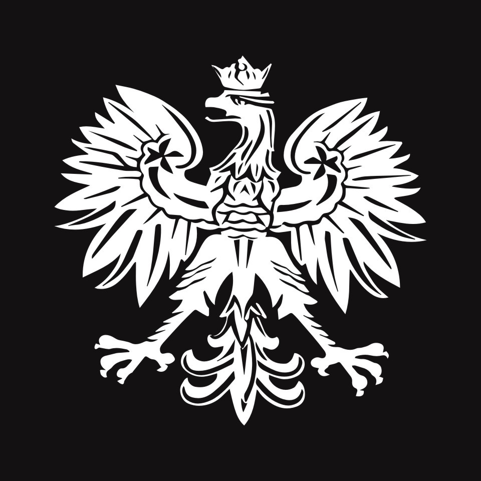 Cunymagos Polish Eagle Poland Symbol Fashion Car Stickers Animal Pattern Car Styling Decal Sticker Auto Motorcycle 15.2CM15 (4)