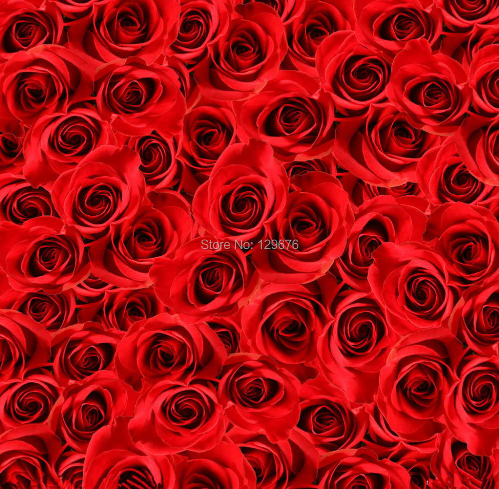 10x10ft Valentines day theme Photography Backdrops Vinyl Prop Photo Studio Background QRL283<br>