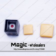 Free shipping Beifang Magic - magic dice Double barrel Clairvoyance magic tricks