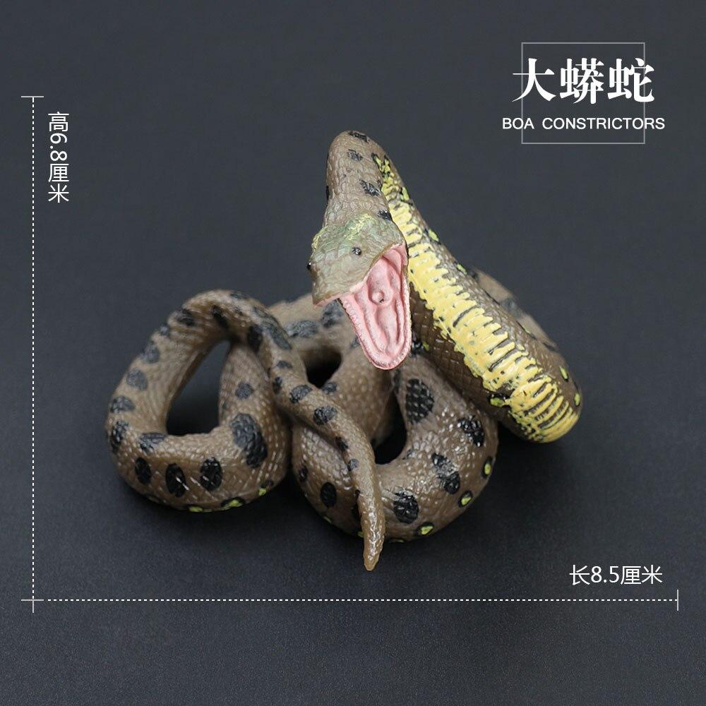 Get Of Boa Constrictors In Girlfeetprk