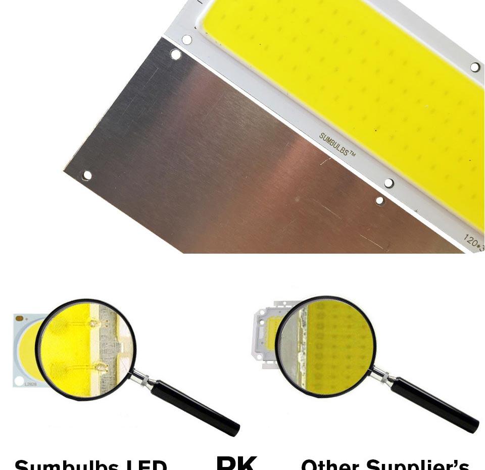 DC12V LED COB Bulb Light Emitting Diodes 2W-200W Round COB Strip White Red Blue Color 12V LED Lamp Chip for Auto Car Bulbs DIY (19)
