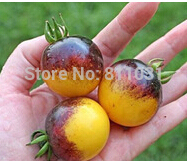 Free Shipping 25pcs/bag Tomato Seeds Bumble Bee Heirloom Tomato Seeds Home Garden DIY Plant Bonsai Tomato Free Shipping