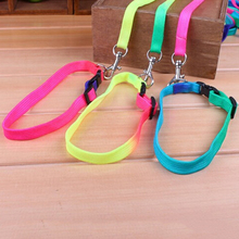 2017 Useful Rainbow Color Pet Small Dog Puppy Collar Leash Soft Walking Harness Lead Basic Halter Harnesses Retractable Leashes