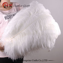 10pcs/lot Natural white Ostrich Feathers 15-75cm Colorful Feather Decoration Wedding Party Plumage Decorative Celebration