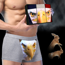 Personalized Eagle Cartoon Boxer Shorts High Fashion Bamboo Men's Boxers Sexy Young Funny U Convex 3D Animal Male Panties(China)