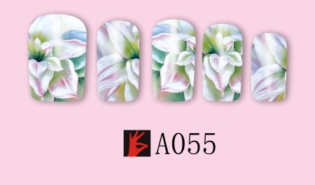 A055(1)