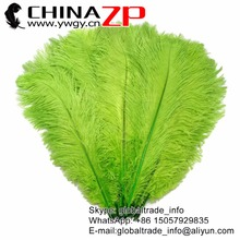 CHINAZP Factory Size 45~50cm(18~20inch) 50pcs/lot Length Cheap Wholesale Dyed Lime Green Ostrich Drab Feathers