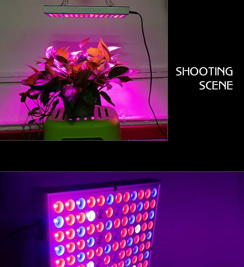 panel led grow light (10)