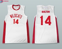 Embroidery Stitched Zac Efron Troy Bolton shirt 14 East High School Wildcats White Basketball Jersey(China)