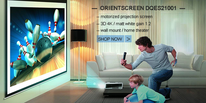 1 Electric Screen-DQES21001
