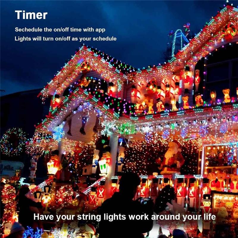 Dimmable LED Christmas Lights (3)