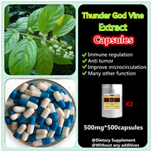 Thunder God Vine 20:1 Extract,Tripterygium Wilfordii Root Extract,Lei Gong Teng Extract,100% Pure Nature,dietary supplement(China)