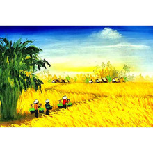 40x50  Harvest wheat fields Mural home decor wall Oil Painting Coloring By Numbers on Canvas art Modular poster pictures DY065