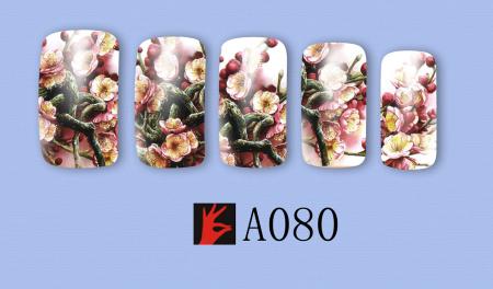 A080(1)