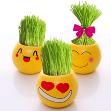 Prevent Radiation Office Mini Grass Potted Fun DIY Planted Grasshead Doll Landscape Plant with Ceramic Pot + Seed + Soil