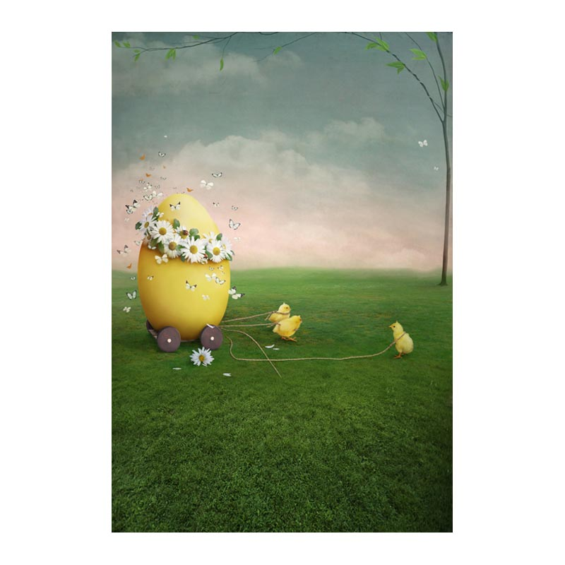 Thin fabric computer Printed photography background Easter eggs blossoms photo backdrop for Studio 5X7ft GE-066<br><br>Aliexpress