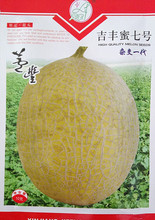 Fruit Seeds Ji Feng Mi Seventh Seeds Hami Melon Melon Seeds White Meat Crisp Sweet Hybrid 10 g / bag
