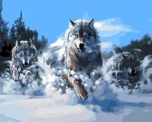 Frameless picture oil painting by numbers paint by number for home decor canvas painting 4050 wolf running