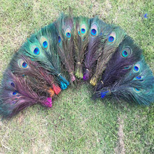 5pcs Staining Peacock Tail Feathers about 10-12 Inches""