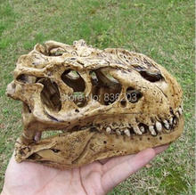 1/12 tyrannosaurus SCALE RESIN DINOSAUR SKULL MODEL COLLECTIBLE COLOR WHITE(China)
