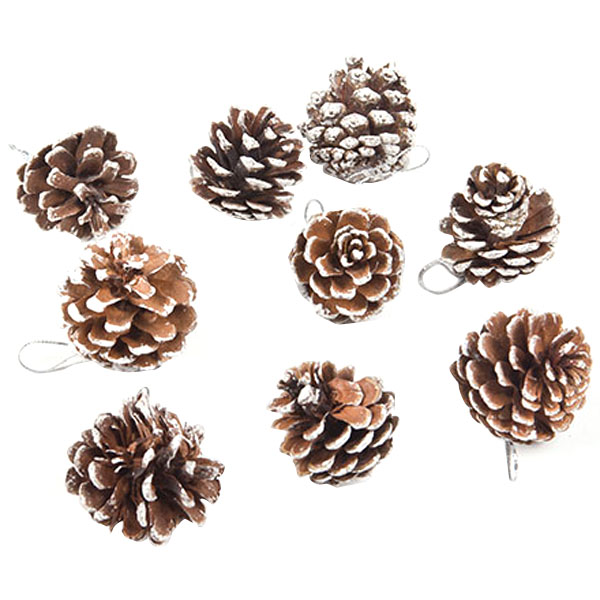 9 PCS/lot Real Natural Small Pine cones for Christmas Craft Decorations White Paint(China (Mainland))