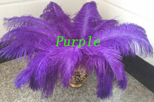 HOT ! 10pcs 30-35cm / 12-14 inch beautiful natural purple ostrich feather DIY Craft decoration(China)