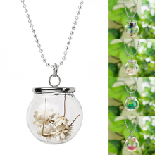 New Hot Handmade Glass Bottle Silver Ball Chain Pendant Dried Flower Necklace #84062