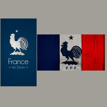 FREE shipping FRANCE national team towels Microfiber towel football soccer towel