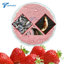 1 Bag 20g Strawberry Flavor Additive Carp Fishing Groundbait Flavours Fishing Bait Making Scent Carp Fishing Feeder Bait(China)