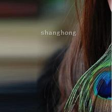 party supplies ,Pure natural peacock feather Pendant Earrings,(China)