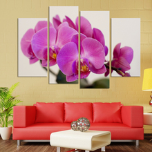 New Modular Pictures UnFramed 4 panels butterfly orchid flowers group painting canvas art home decor wall art oil painting HD im