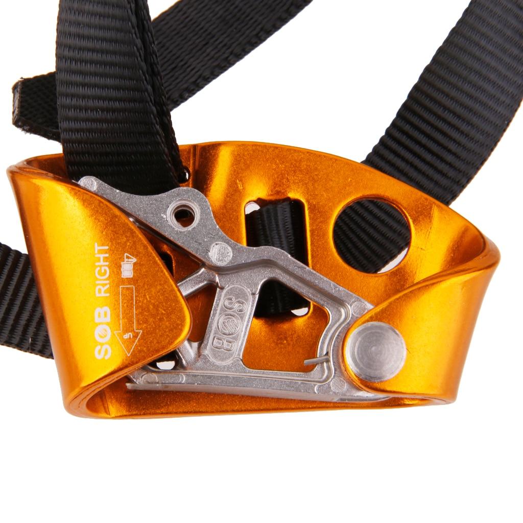 Anti climbing device photos