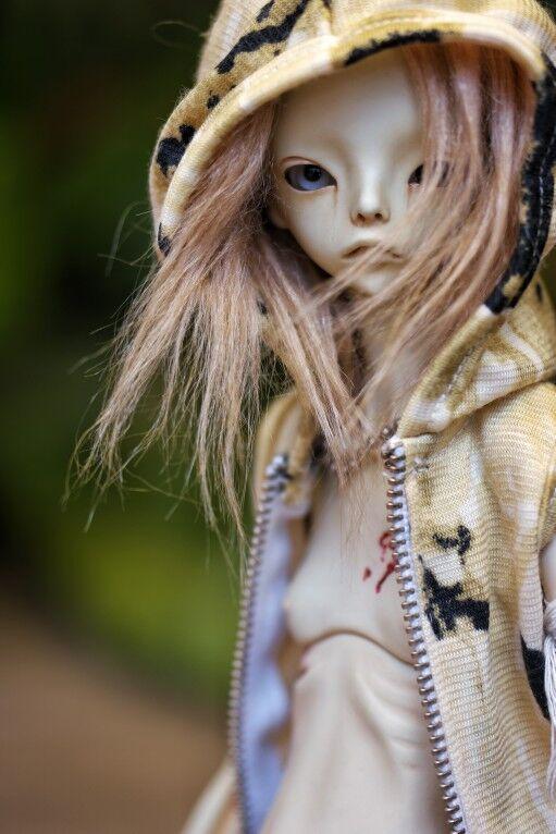 1//4 bjd doll Signus