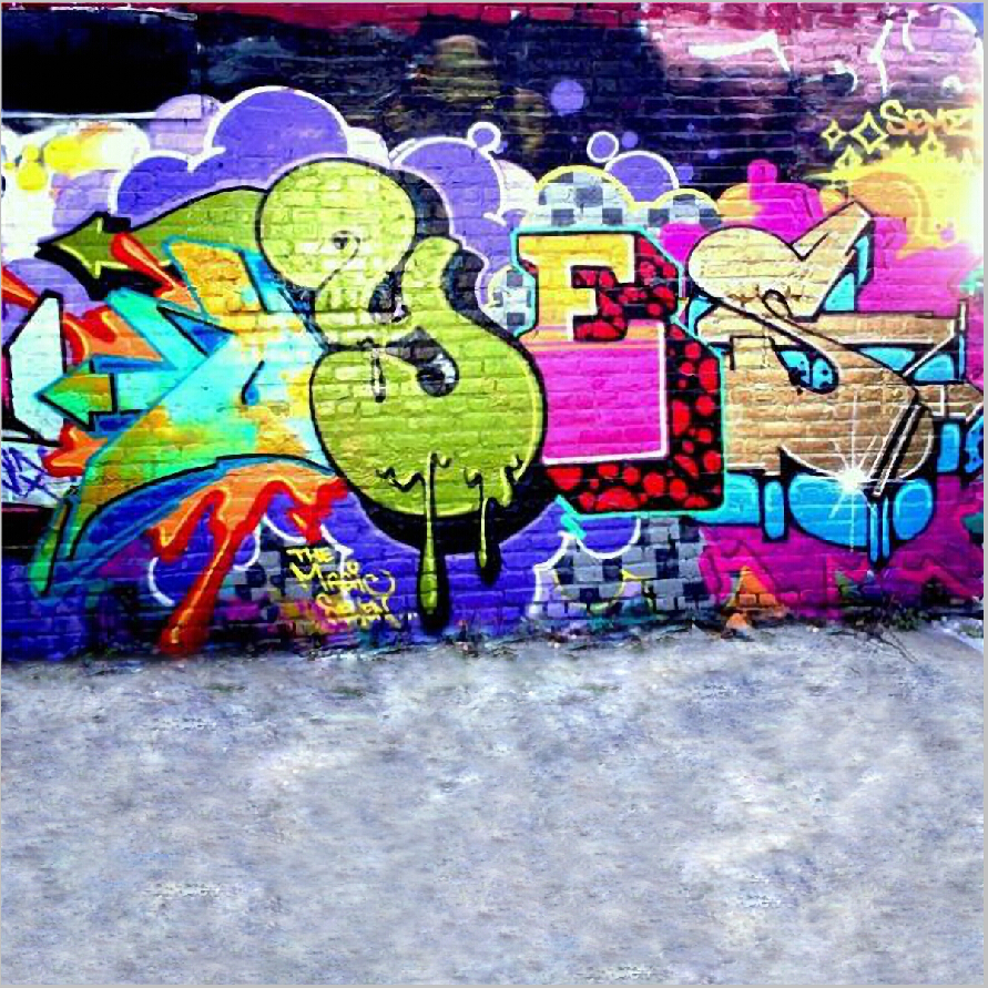 8X8ft   Thin fabric cloth Printed photography background Graffiti wall backdrop Floor for  Studio  DGX-013<br>
