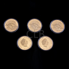 Wholesale Elizabeth II Gold Plated Coin The Australia Kangaroo Design 1 Oz Round Coins with Plastic Case for Collection