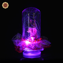 WR Wedding Decor LED Music Box Valentine's Gifts Creative Lace Snow Ball New Year Gifts Christmas Home Decorations Women Favor