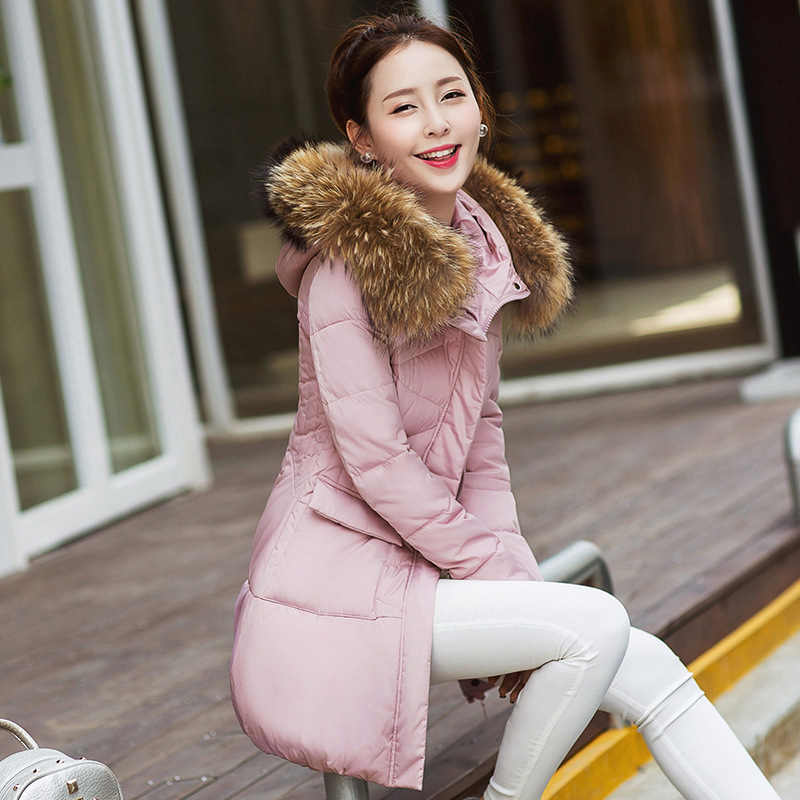 Zippers Direct Selling Polyester Solid Zipper Slim Standard Full 70% 2017 Winter Lady Fashion Padded Coat Hooded Code Одежда и ак�е��уары<br><br><br>Aliexpress