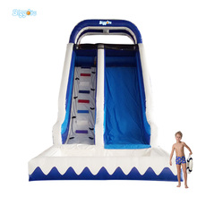 Ocean Theme Popular Commercial Inflatable Bouncer Inflatable Water Slide With Pool