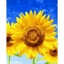 FUNIQUE Canvas DIY Sunflower Blue Sky Oil Painting By Numbers Modular Coloring Wall Arts Pictures For Living Room Nordic 40x50cm