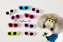 50PCS/LOT 5072# Wholesale Dog Accessories Pet Hair Clips Glasses Shape Dog Hair Clips Doggie Boutique Pet Show More Colors
