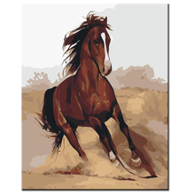 Diy painting by numbers hand painted canvas oil paintings Wild horse picture living room wall canvas art decoration
