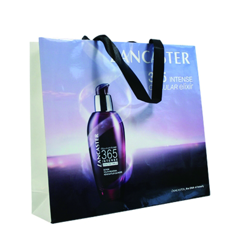 Luxury Paper Bags With Ribbon Handle And CMYK Graphic Image Printing