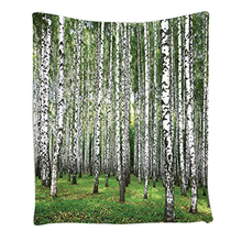 Boutique DODA Forest View Picture, Bedroom Living Kids Girls Boys Room Dorm Accessories Wall Hanging Tapestry, Green Grey