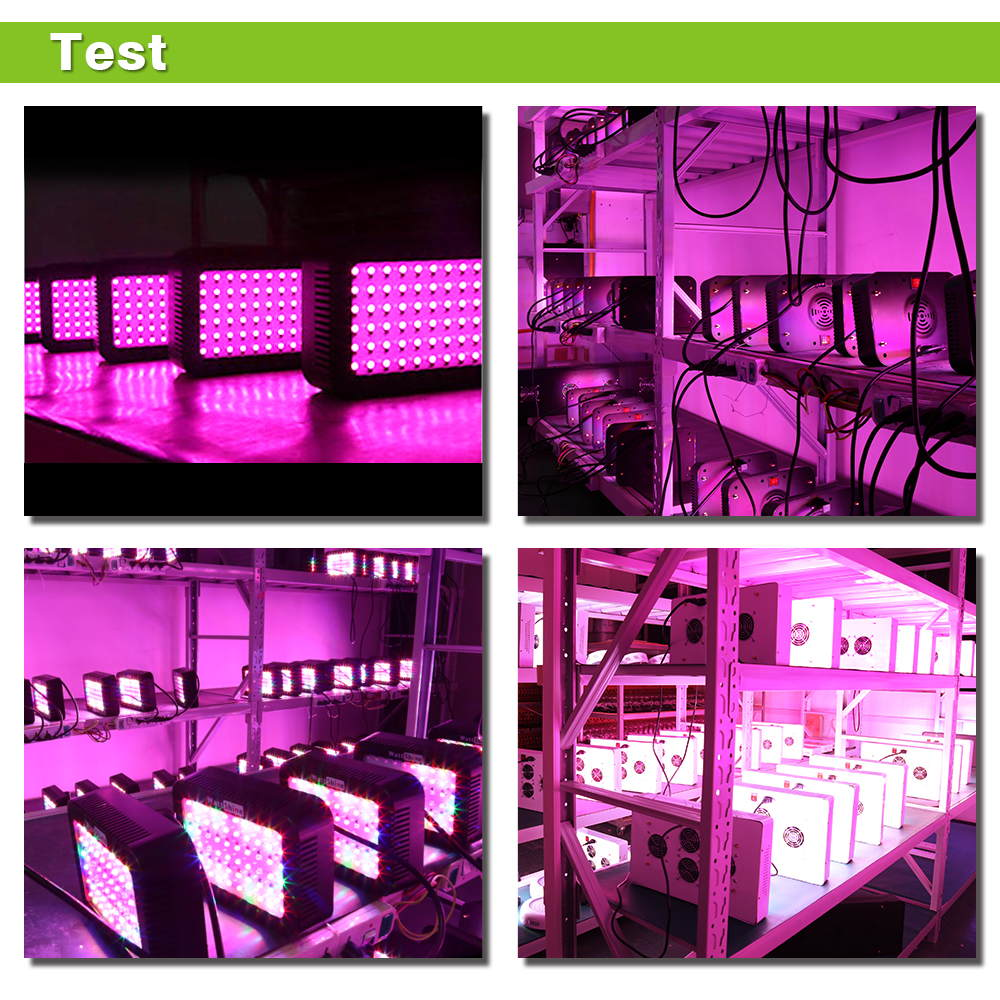 New Free shipping 300W LED Grow lights  Houseplant Grow tent Garden Greenhouse plant 5W  Epistar Flowers Herbs Full spectrum  (13)