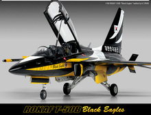 ACADEMY 12242  1/48 Scale  ROKAF T-50B Black Eagles Plastic Model Building Kit