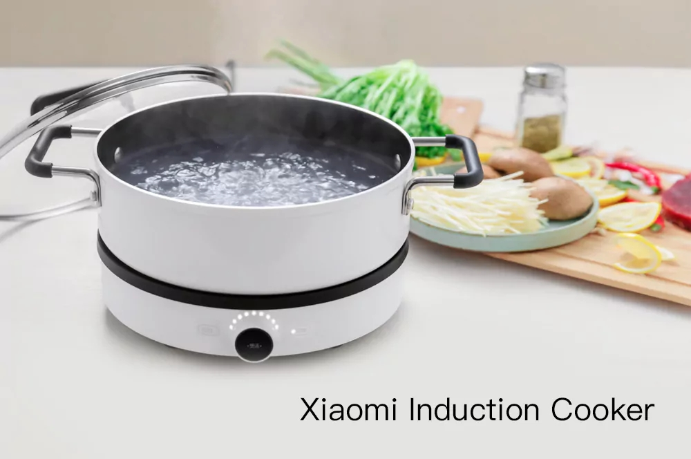 Xiaomi Dual Frequency Firepower Precise Control Induction Cooker