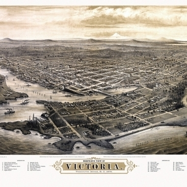 Old Map of Victoria 1878 County Poster Print (36 x 54)