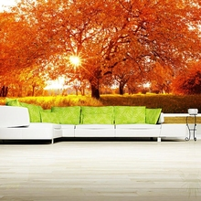 Seasons Autumn Trees Rays of light Grass Nature wallpaper,restaurant coffee shop bar living room kitchen tv wall custom 3d mural